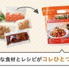 おいしいご飯がお手軽に!dミールキット【トライアルキットを試した感想】